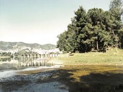 Liqeni artificial ose keneta e Tiranes