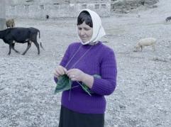 Punedoret e grave shqiptare habisin regjisorin austriak