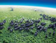 Gjithçka që duhet të dini për planetin Tokë