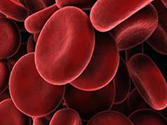 Semundjet e gjakut, keshilla se si te kuroheni