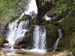 Bukurite natyrore te Rugoves