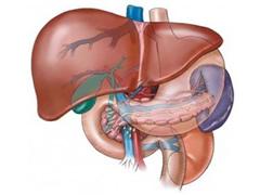 Semundjet e melçise, ushqimet qe i shkaktojne dhe si kurohen