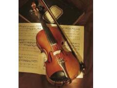 Koncert me muzike klasike ne sallen e MTKRS