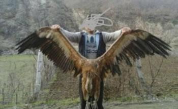 'Patriotizmi shqiptar'/ Vritet nje shkabe ne Kukes, mendohet se ishte e fundit ne Shqiperi