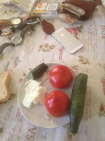 Fotoja qe thyen rrjetin: Pasaniku shqiptar ha kastraveca e domate